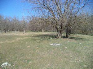 Обширна поляна в района на Побити камъни