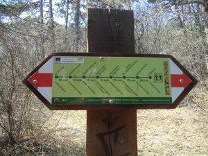 """Екопътека парк """"Златни пясъци"""" - указателна табела в гората под Аладжа манастир"""