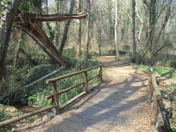 """Екопътека парк """"Златни пясъци"""" - много красив дървен мост сред гората"""