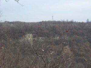 Маршрут Кочмар - Балам дере - изглед към гората от поляната със заслона