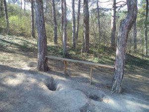 Маршрут Аспарухово - Боровец - място за почивка в гората над Аспарухово