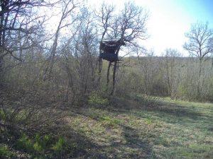 В гората край кв. Аспарухово - дървената кула - снимка от далече