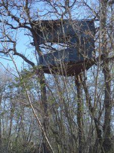 В гората край кв. Аспарухово - дървена кула
