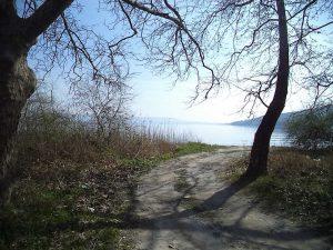 Пътя, който отвежда до брега на Варненското езеро