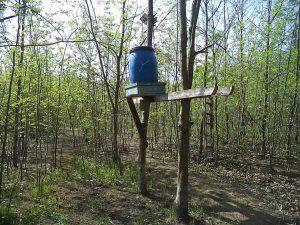Хранилка за животни в гората край кв. Звездица