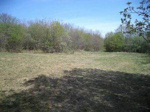 Обширна поляна в гората край кв. Звездица