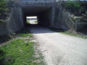 """Пътен тунел от Звездица към гората минаващ под магистрала """"Черно море"""""""