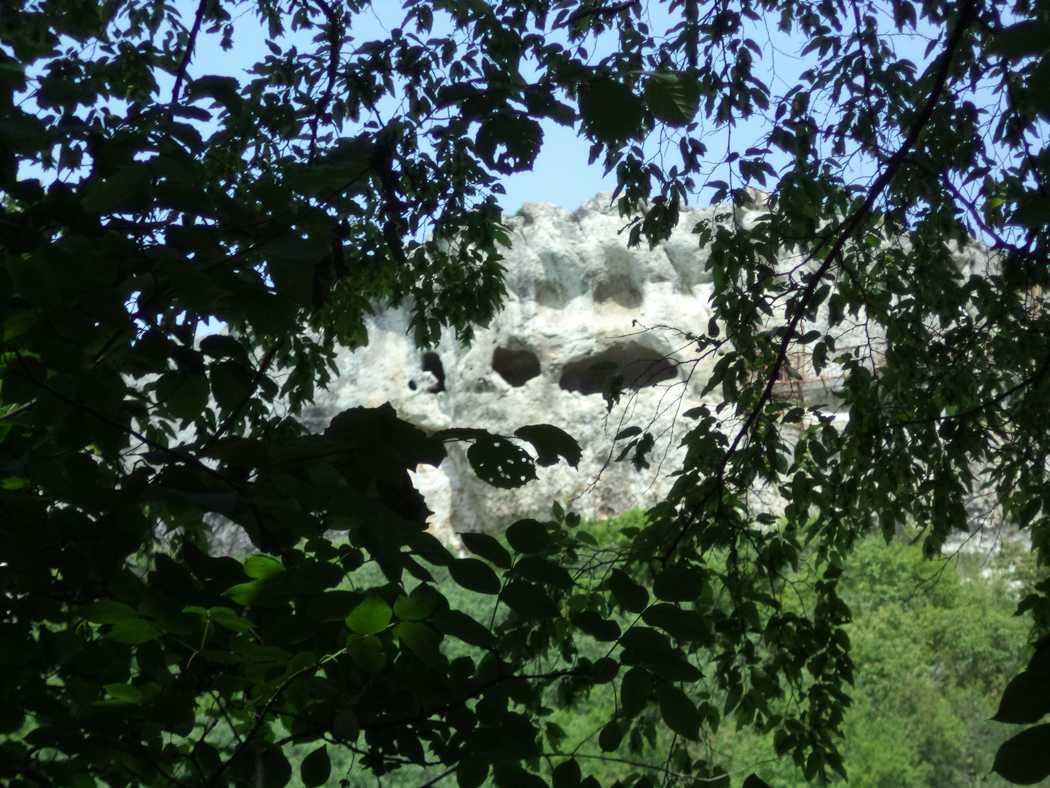 """Скален манастир """"Шашкъните"""" - поглед от гората"""