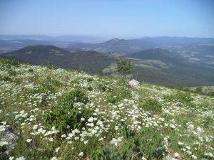 Изглед към Стара планина от връх Коджа кая