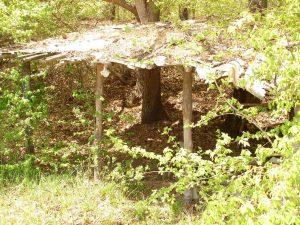 Стар заслон в гората край с. Близнаци
