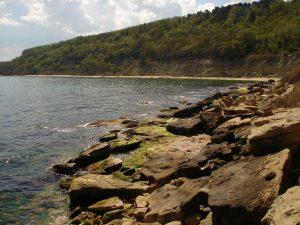 Скалистия бряг до плаж Папаз кулак