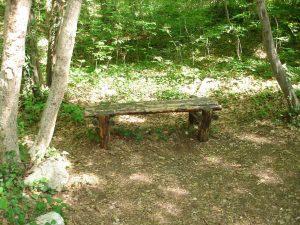 """Екопътека парк """"Златни пясъци"""" - красива дървена пейка край пътеката"""