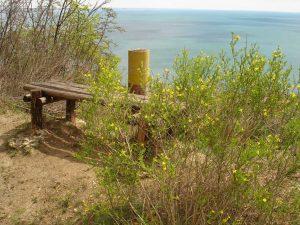 """Екопътека парк """"Златни пясъци"""" - място за почивка с морска панорама"""