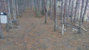 Импровизирано място за пикник в гората край кв. Виница