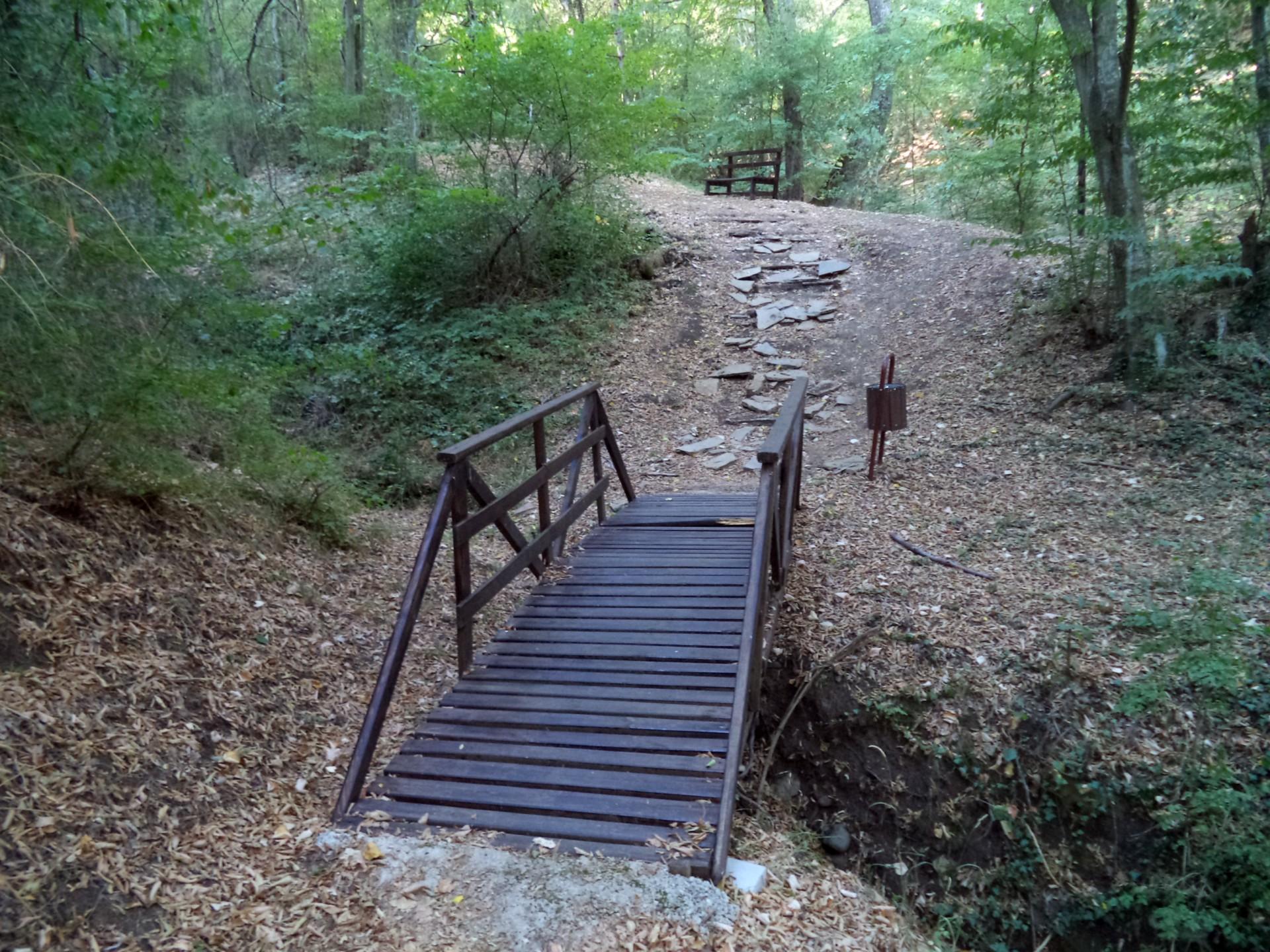 """Екопътека """"Калето"""" - дървен мост по пътеката към """"Изворът на самодивата"""""""