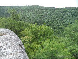 Панорамен изглед от скалата на Тракийското светилище край с. Петров дол