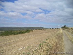 По пътя за местност Тъпаните - полята край с. Рояк