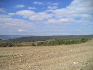 По пътя за местност Тъпаните - селскостопански масиви край с. Рояк