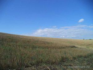 По пътя за местност Тъпаните - красотата на полята
