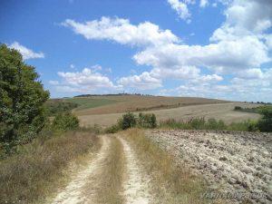 По маршрута за местност Тъпаните - изглед към ТВ кулата край с. Рояк