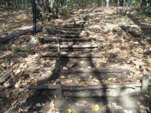"""Екопътека """"Калето"""" - интересни дървени стълби към платото"""
