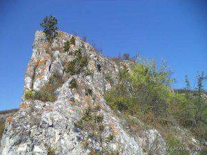 Върхът на Голямата канара
