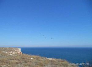 Камен бряг - ято чайки летящи над скалите