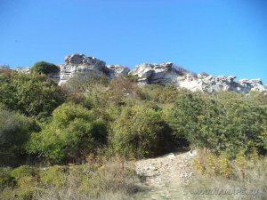 """Резерват """"Яйлата"""" - богатата растителност на скалната тераса"""