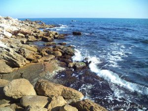 """Резерват """"Яйлата"""" - на морския бряг"""