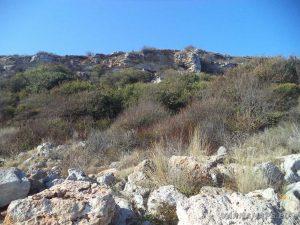 """Резерват """"Яйлата"""" - поглед към високите скали на платото над терасата"""