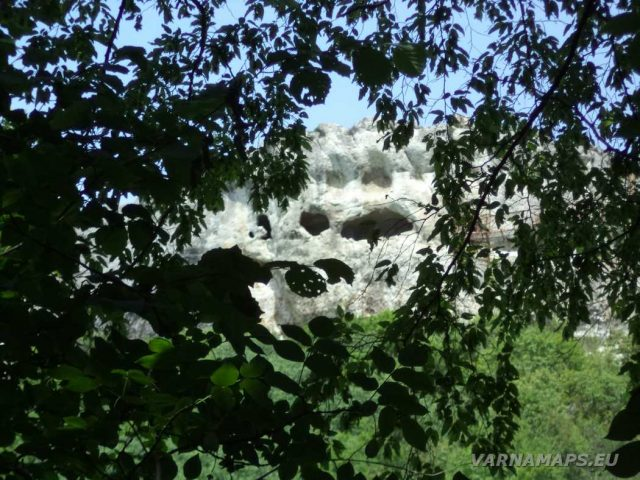 Скален манастир Шашкъните - изглед към него от гората