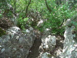 Голямото було - горската пътека към скалите