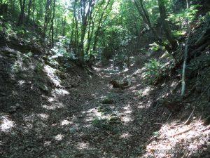 Мадарско плато - стар римски път към платото