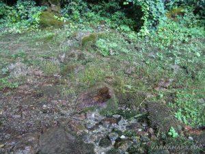 Мадарски конник - Голяма пещера - зелена растителност