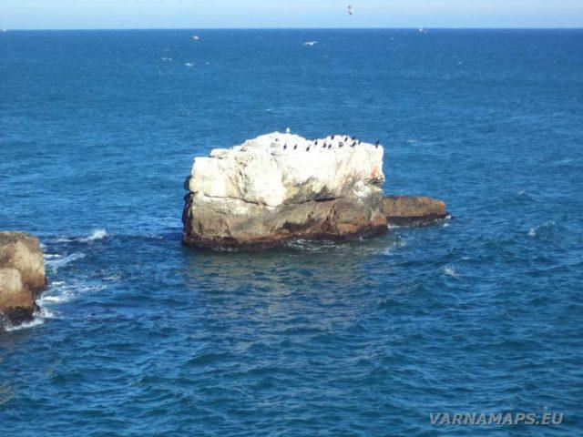 Екопътека Тюленово - скала с птици в морето