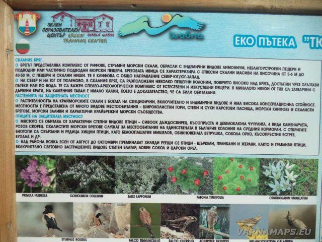 Екопътека Тюленово - информационна табела
