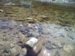 Река Двойница - речното дъно изпълнено с камъчета