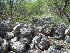 """Скален манастир """"Гюре Бахча"""" - руини от средновековна крепост"""