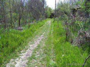 Водопад Шарлъка - красивата зелена пътека в началото на маршрута в с. Могила