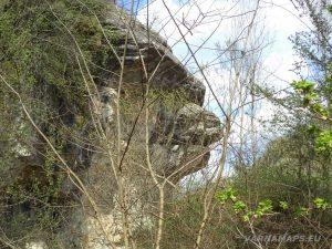 Водопад Шарлъка - интересна скална глава в скалите край водопада