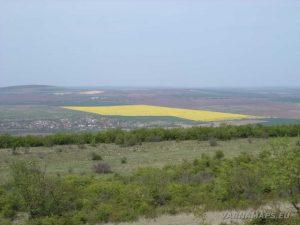 Провадийското плато - панорамен изглед към с. Златина