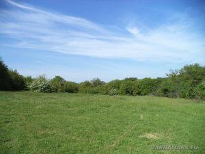 Местност Канарата - красивата поляна пред ловния заслон