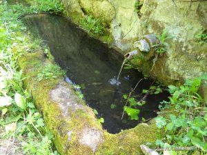 Местност Канарата - горската чешма край ловния заслон