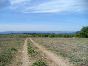 Местност Канарата - красивия черен път към Канарата