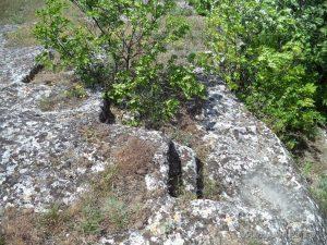 """Скален манастир """"Чукара"""" - скални стъпала в скалите над манастира"""