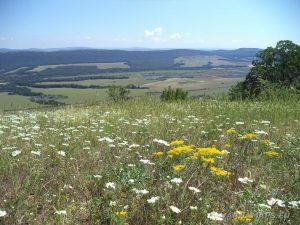 """Край язовир """"Цонево"""" - панорамен изглед от хълма """"Града"""" към равнината"""