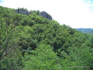 Чудните скали - красиви скални формирования по маршрута край природната забележителност