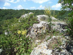 Местност Капладжата - на върха на скалното образувание