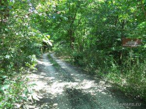 Скалните манастири край с. Войново - черния път през гората