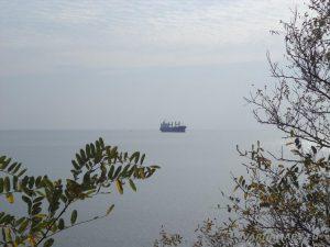 """Красива морска панорама от гората над плаж """"Галата"""""""